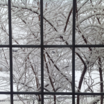 winter-window