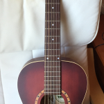 Goodbye to my Ami Parlor Guitar